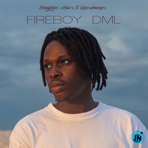 Fireboy DML - High on Life